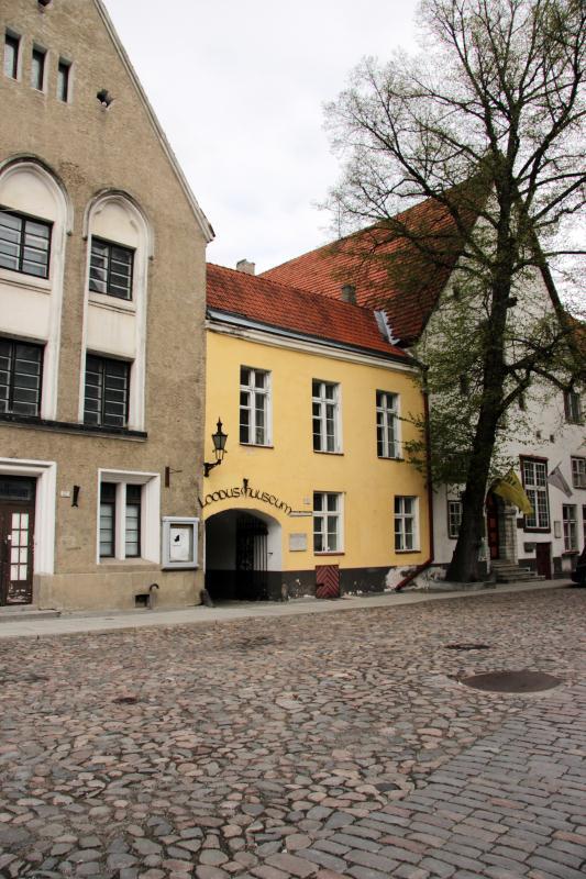 File:Tallinn_Loodusmuuseum.jpg