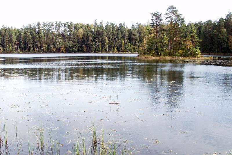 File:Järvamaa_Kõrvemaa_Paukjärv_2003.jpg