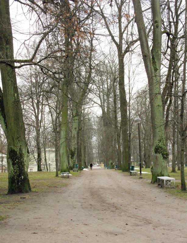 File:Tartu_Toomemägi_park.jpg